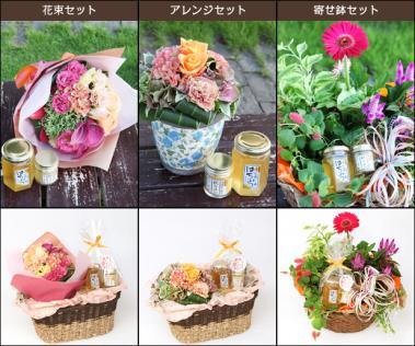 敬老の日ギフト_ご長寿セット(はちみつウコン+花束orアレンジor寄せ鉢)