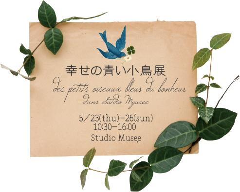 aoikotori2013-2.jpg