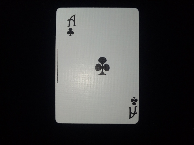 20130403 (77)
