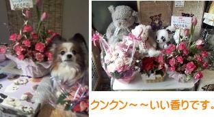 15周年愛&お花