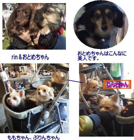 長谷山様&羽藤様20131119