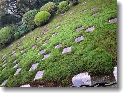 tofukuji1311_10.jpg