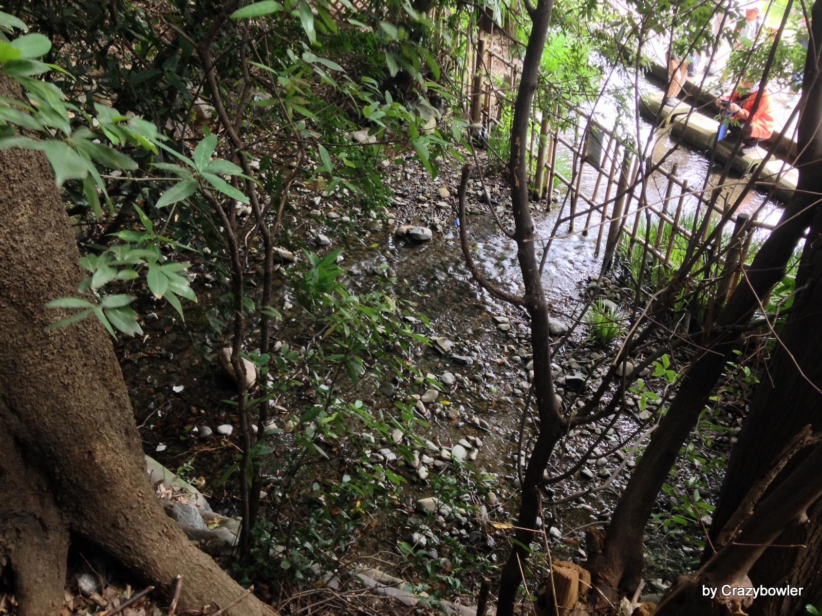 国立市 青柳段丘崖のママ下湧水