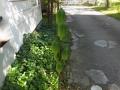 ubayurimi1-web300.jpg