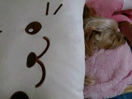 クラリスそらのベッドをかけて寝る1