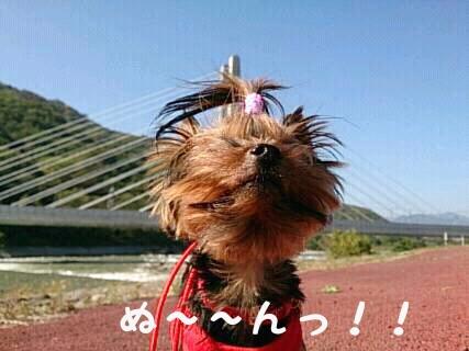 13.10.28そらの散歩新幹線吊り橋と6ぬ~んっ!!