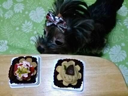 そらの2歳の誕生日ケーキ3