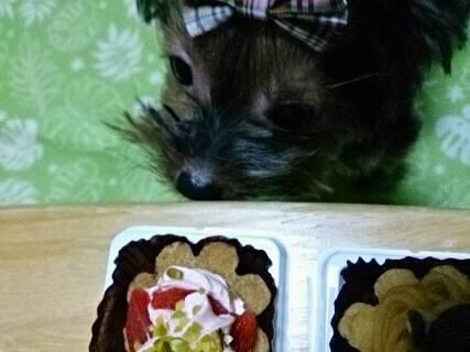 そらの2歳の誕生日ケーキ5