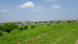 008江戸川大橋、京葉道路、スカイツリー見えない