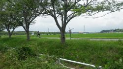 003印旛沼ふれあい広場通過