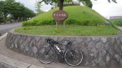 007成田市街を向けさくらの山到着休憩