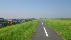 013江戸サイを松戸から北上します