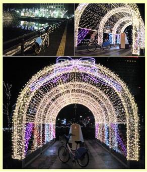 ブログ用写真3 イルミ公園20141215
