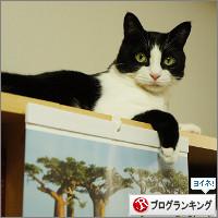 dai20140916_banner.jpg