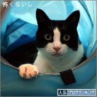 dai20140918_banner.jpg