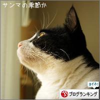 dai20140922_banner.jpg
