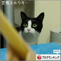 dai20140924_banner.jpg