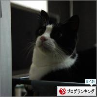 dai20140926_banner.jpg