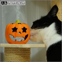 dai20141007_banner.jpg