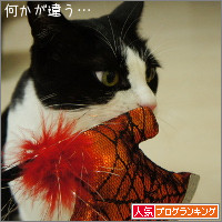 dai20141008_banner.jpg