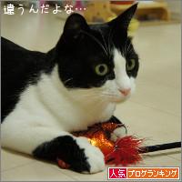 dai20141009_banner.jpg