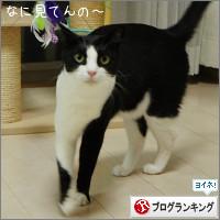 dai20141010_banner.jpg