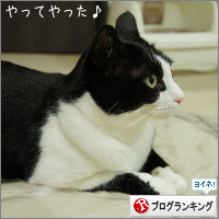 dai20141016_banner.jpg