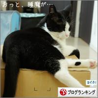 dai20141017_banner.jpg