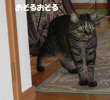 2014100705.png