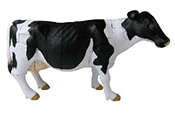 bank_puzzle_cowS.jpg