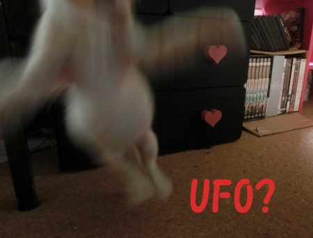 UFO!?