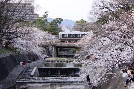 20130330_shukugawa_park-03.jpg