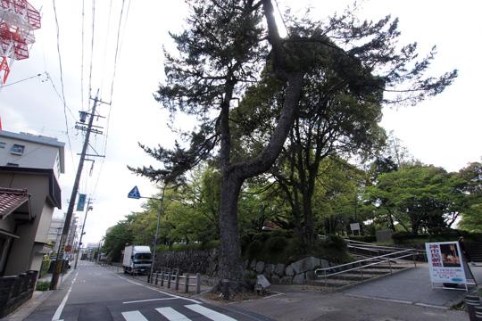 20130427_tsu_castle-11.jpg