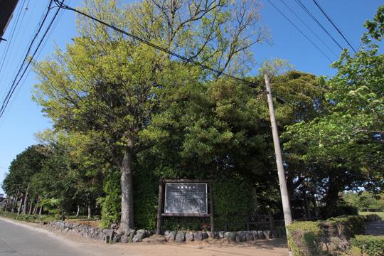 20130428_itsukinomiya-06.jpg