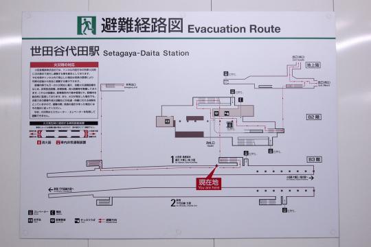 20130505_setagaya_daita-05.jpg