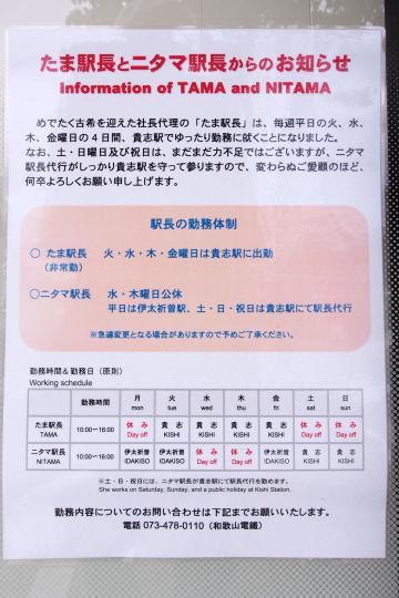 20130706_wakaden-02.jpg