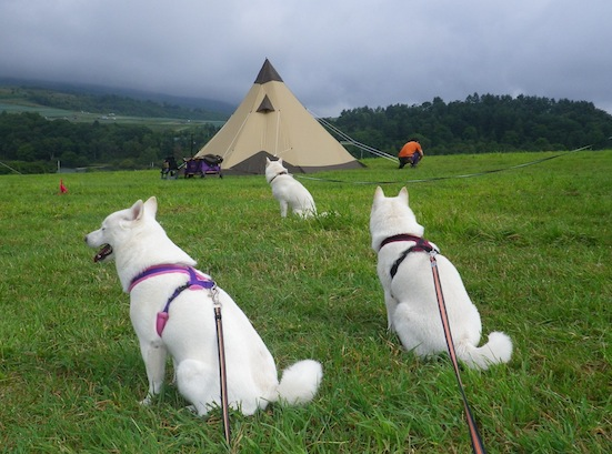 2013.9.7 キャンプ2日目フリーエリア2