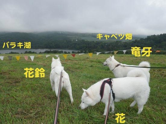 2013.9.7 キャンプ2日目フリーエリア