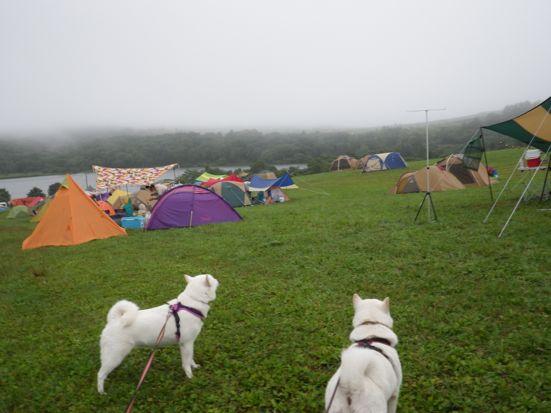 2013.9.8 キャンプ3日目フリーエリアにて