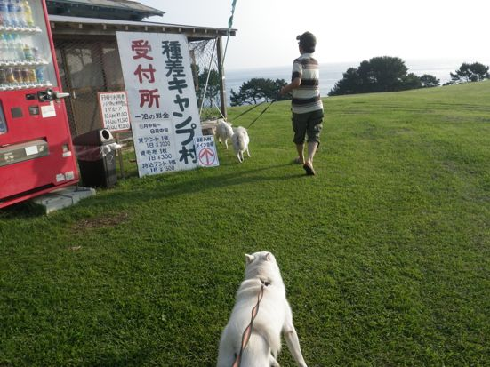 2013.9.14 種差海岸2