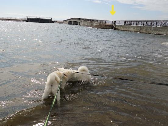 2013.10.2 豊浦海浜公園5
