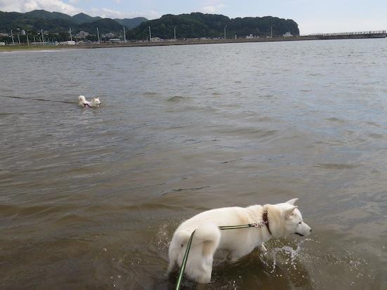 2013.10.2 豊浦海浜公園4
