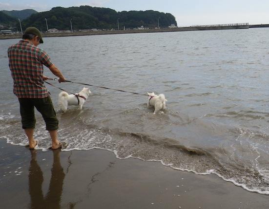 2013.10.2 豊浦海浜公園1