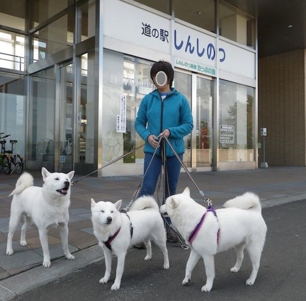 2013.10.4 道の駅しんしのつ