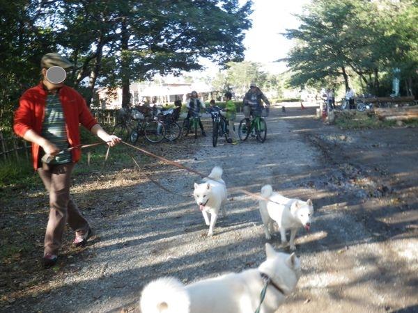 2013.10.26 こんぶくろ池自然博物公園8