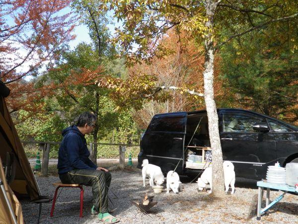 2013.11.3 朝のキャンプ場