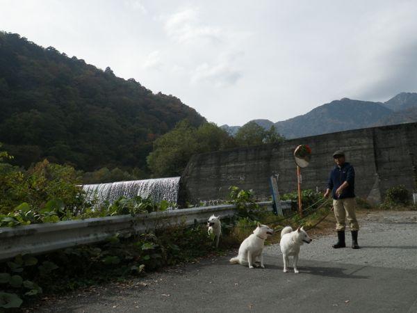 2013.11.3 大武川ダム