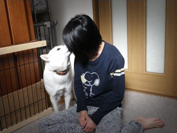 2013.11.19 花はお姉ちゃんと