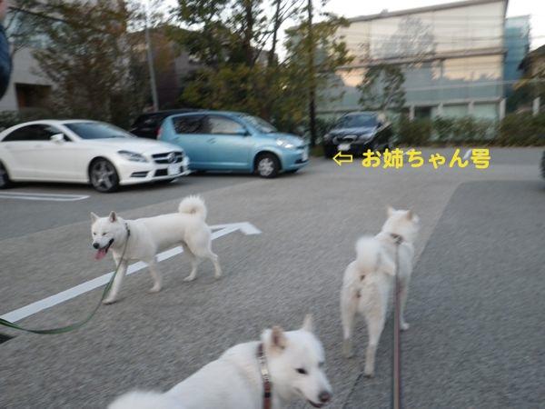 2013.11.23 代官山ツタヤ