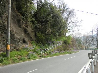県道510号線新小倉橋下